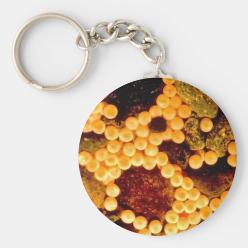 Fritada de color salmón del huevo llaveros
