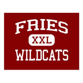 Fritadas - gatos monteses - escuela secundaria - tarjeta postal