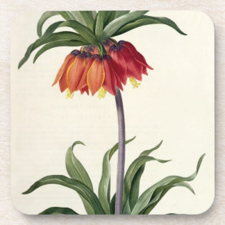 Fritillaria Imperialis from, `Les Lilacees', 1802- Coaster