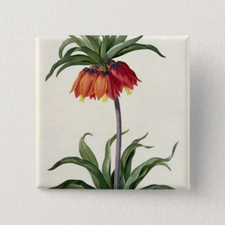 Fritillaria Imperialis from, `Les Lilacees', 1802- Pinback Button