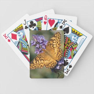 Fritillary abigarrado baraja cartas de poker