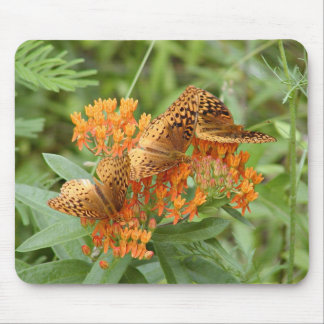 Fritillary butterflies mouse pad