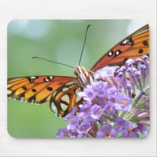 Fritillary Butterfly Flower Floral Wildlife Animal Mouse Pad