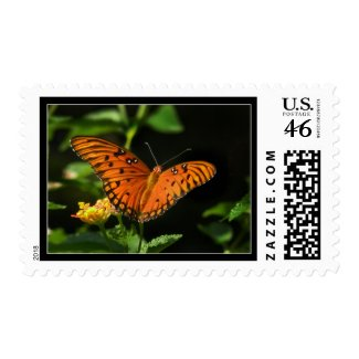 Fritillary Butterfly Photo Postage Stamps stamp