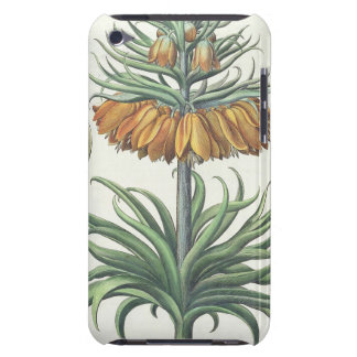 Fritillary: Corona Imperialis florum classe duplic Barely There iPod Cover