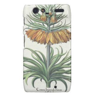 Fritillary: Corona Imperialis florum classe duplic Droid RAZR Covers