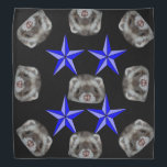 "fritz the ferret bandana<br><div class=""desc"">fritz the ferret from Raven&#39; magickal ferretry</div>"