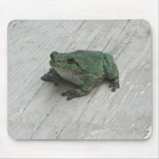 frog1 mouse mat