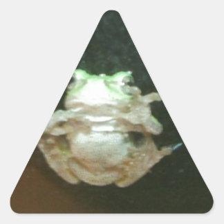 frog 004.JPG Triangle Sticker