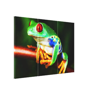 Frog 1 Wrapped Canvas Stretched Canvas Print