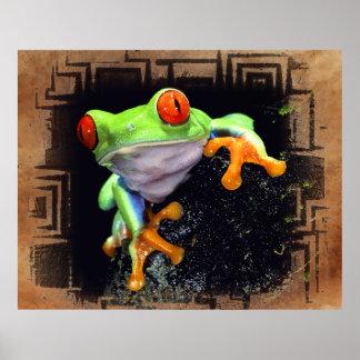 Frog 3 Bordered Print Options