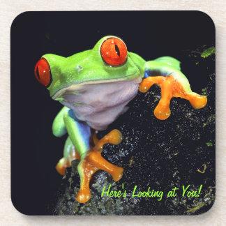 Frog 3 Coaster