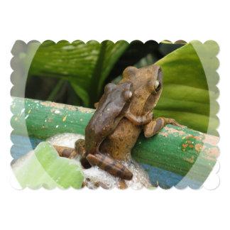 """frog-44.jpg invitación 5"""" x 7"""""""