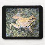 Frog (American Bull Frog) Mouse Pad
