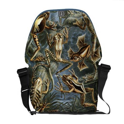 Frog Amphibians Illustration Courier Bag
