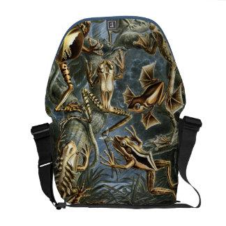 Frog Amphibians Illustration Messenger Bags