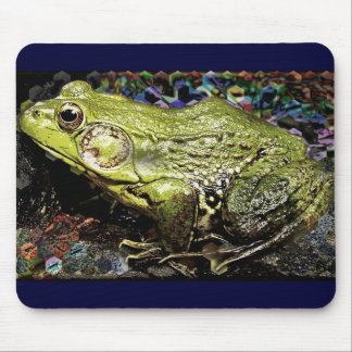 Frog and Colors Mouse Pads
