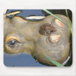frog and hippo mouse mat