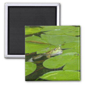 Frog and Lily Pad Magnet