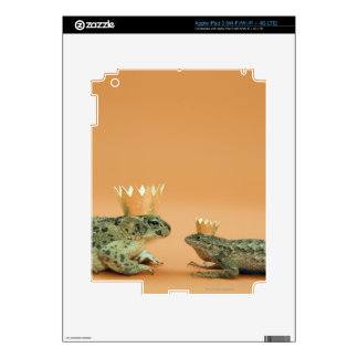 Frog and lizard wearing crowns decals for iPad 3