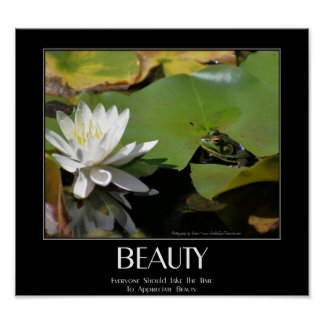 Frog And Lotus Flower Beauty Quote Inspirational Poster