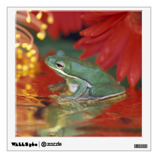 Frog and reflections among flowers. Credit as: Wall Sticker