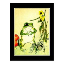 Frog and Spider Postcard