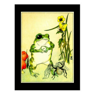 Frog and Spider Post Cards