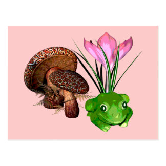 Frog and Toadstool Postcard
