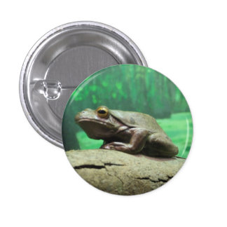 Frog Badge 1 Inch Round Button