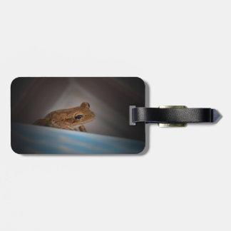 Frog behind blue neat animal amphibian photo bag tags