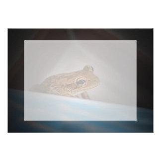 Frog behind blue neat animal amphibian photo custom invitations