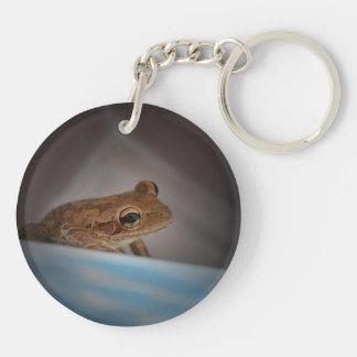 Frog behind blue neat animal amphibian photo acrylic key chains