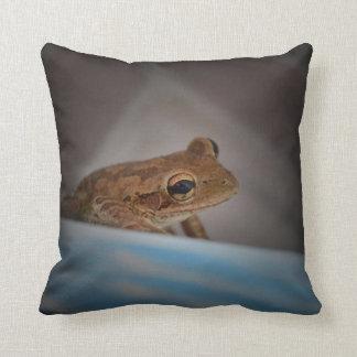 Frog behind blue neat animal amphibian photo pillow