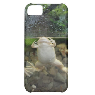 Frog Belly iPhone 5C Cases
