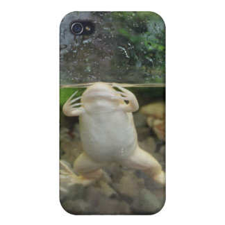 Frog Belly iPhone 4 Case