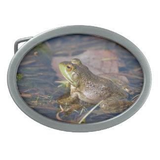 Frog Belt Buckle