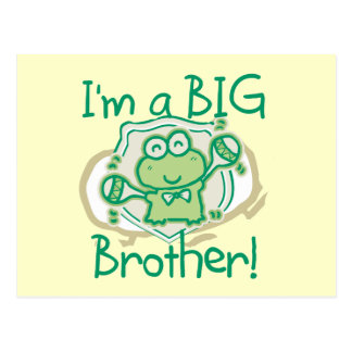Frog Big Brother Postcard