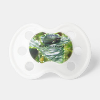 Frog Birthday Pacifier