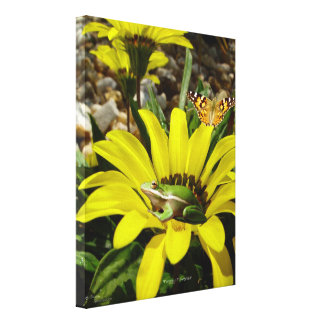Frog butterfly daisy Canvas Print