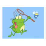 Frog Chasing Fly With Net Post Card