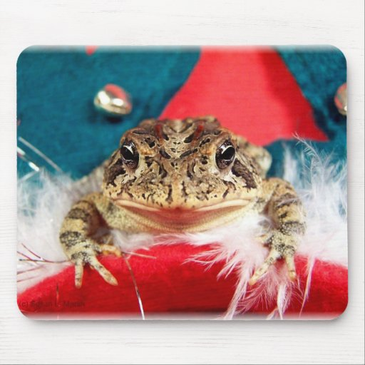 Frog Christmas , Tinsel, feathers, santa pattern Mouse Pad