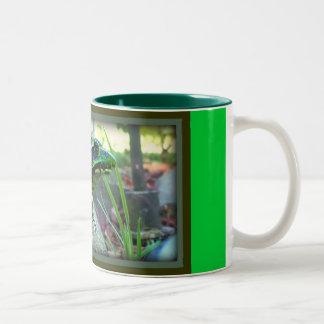 Frog Colors/Mug