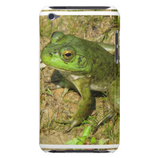 Frog Design iTouch Case iPod Case-Mate Cases