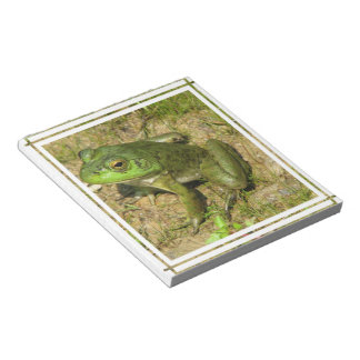 Frog Design Notepad