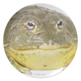 Frog Dinner Plate