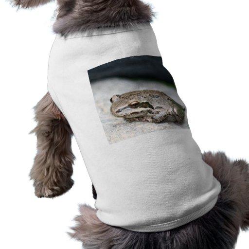 Frog! Doggie Tshirt