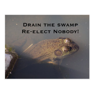 frog Drain the swamp Re-elect Nobody Postcard