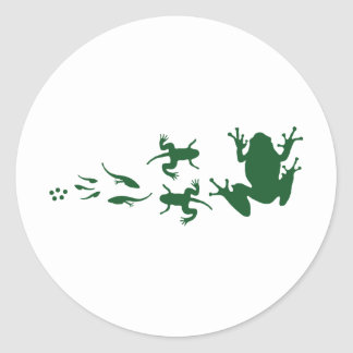 frog-evolution.png classic round sticker