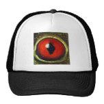 Frog Eye Enlarged Mesh Hat